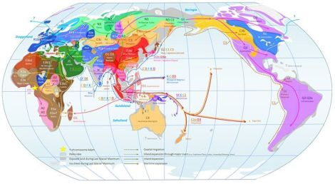 Ydna-map